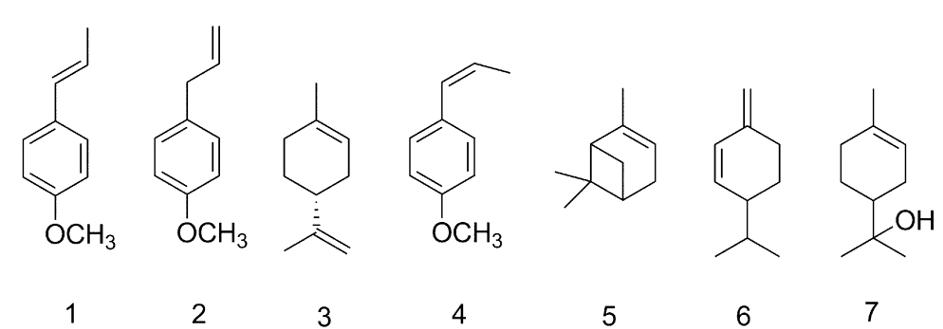 csillaganizs_komponensek